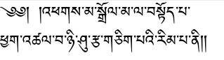 android_tibetan_cropped